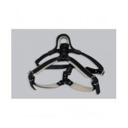 """Leather harness """"male"""""""